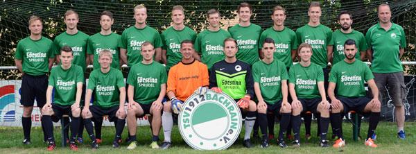 TSV 1912 Bachrain 1. Mannschaft Saison 2014/15