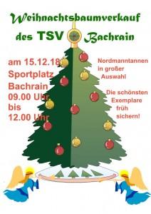 Weihnachtsbaumverkauf am Sportplatz @ Sportgelände des TSV Bachrain | Künzell | Hessen | Deutschland